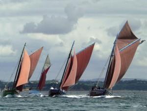 Les coquilliers de la rade de Brest